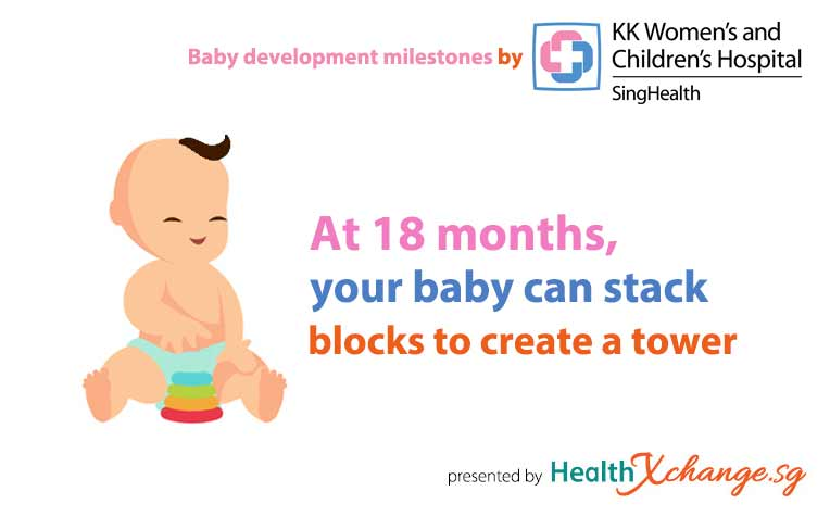 ​Baby Development Milestones 18 Months Old