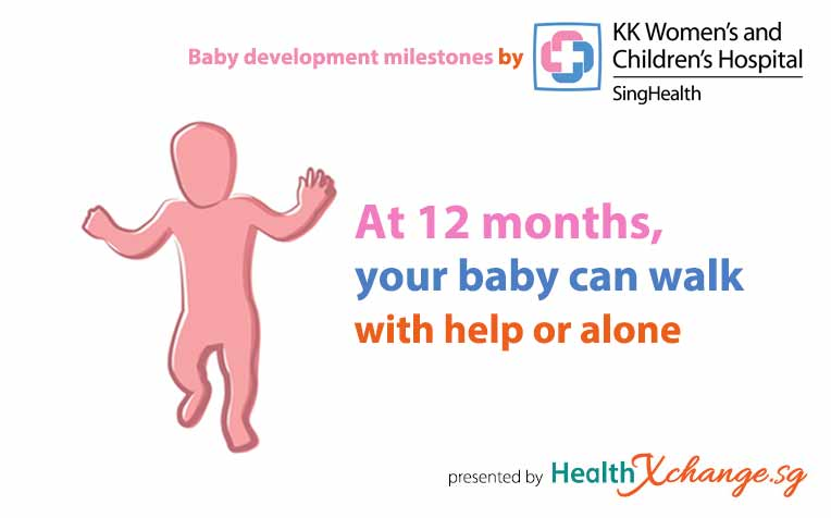 Baby Development Milestones: 12 Months Old