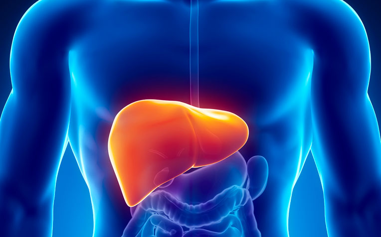 ​How to Reverse Fatty Liver Disease