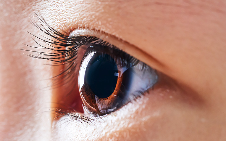 /sites/hexassets/Assets/eye-care/cornea-and-external-eye-disease-page.jpg