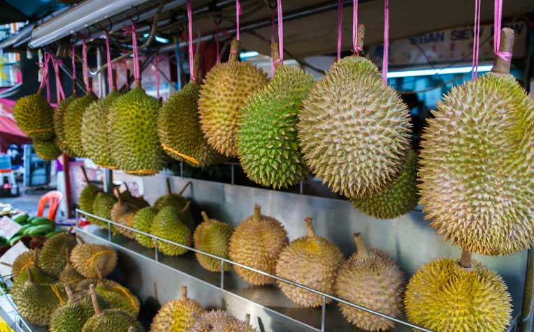 healthwise durian myths the truth about durian and alcohol