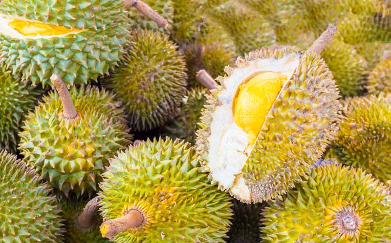 Durians: 8 Myths and Facts About the King of Fruits ...