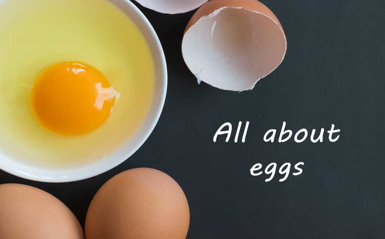 Egg Facts: Nutritional Value, Cholesterol Count, and More​​
