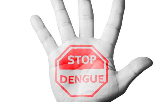 ​​​​Dengue in Singapore and Internationally