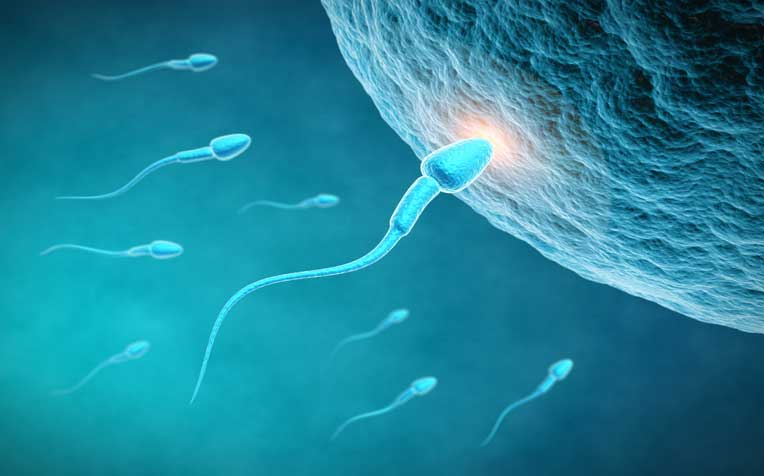 10 Tips to Improve Sperm Count