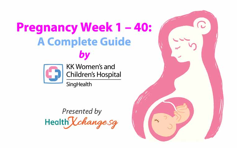 ​Pregnancy Week 1 – 40 A Complete Guide by KKH