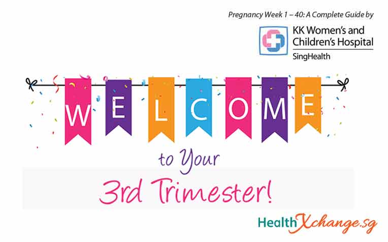 ​Pregnancy Week 29: Welcome to Your Third Trimester!